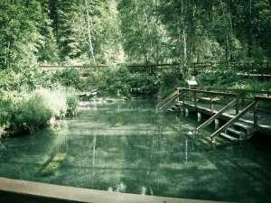 alaska highway liard hot springs