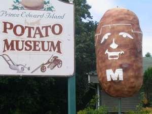 musée canadien de la patate
