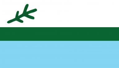 drapeau labrador