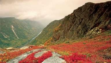 Parc National des Hautes-Gorges de la Rivière Malbaie
