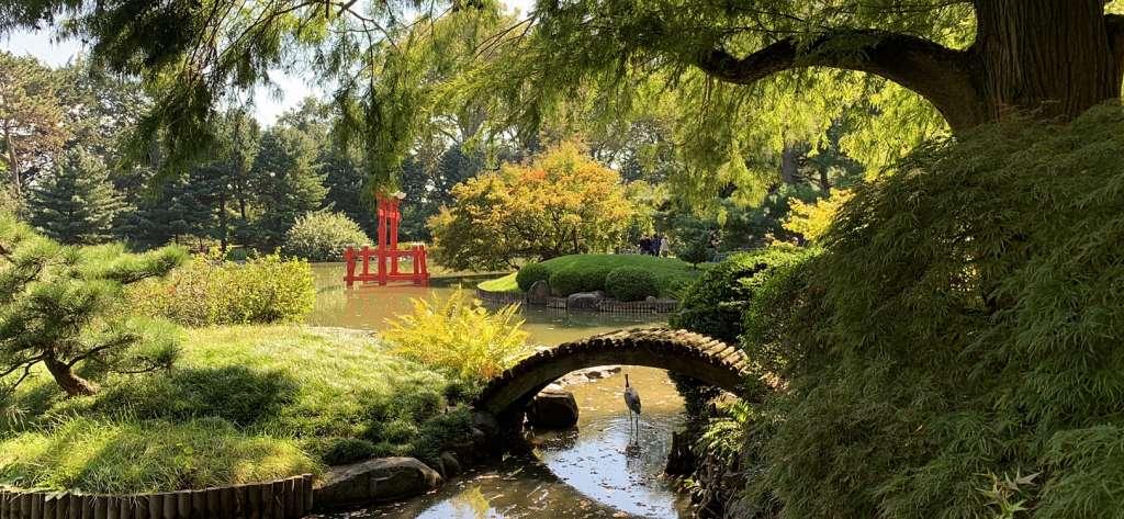 jardin botanique brooklyn