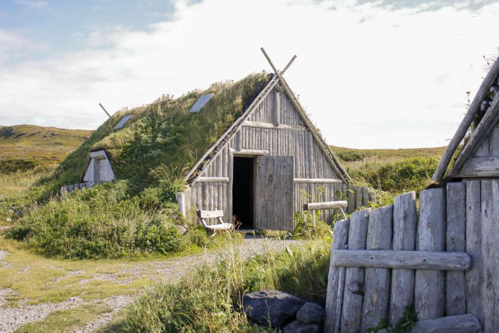 viking terre neuve